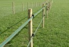 Alpine Electric fencing 4